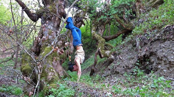 Handstand - Karditsa